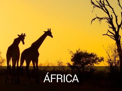 africa-viaje